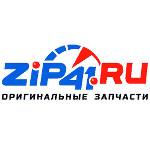 ZiP41